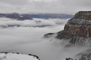 4. The fog rests in the canyon